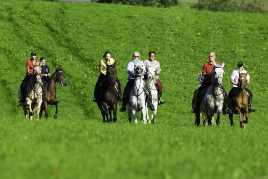 Urlaub - Sommer - Flachau - Reiten - Nordic Walking - Laufen